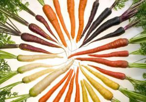 worteleninallekleuren-geenfotoshop